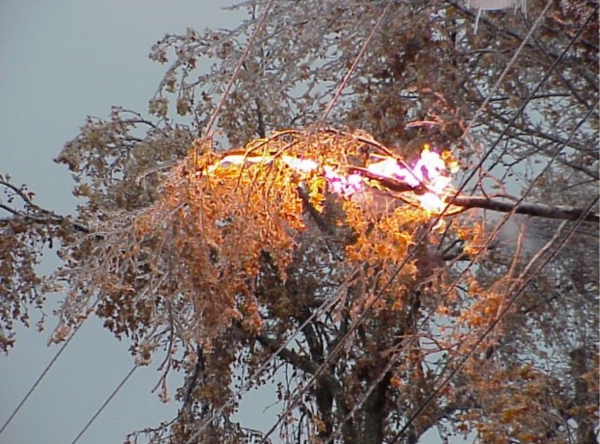 Storm-downed power lines can be a lethal hazard